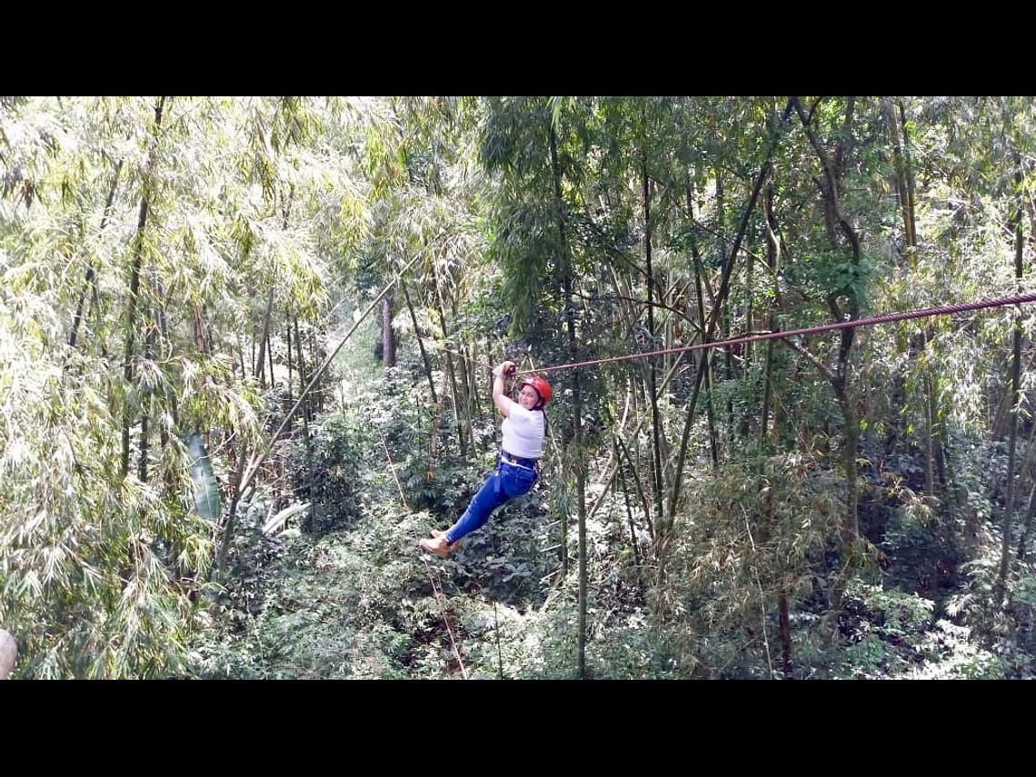 Expérience de vol entre géants (canopée)