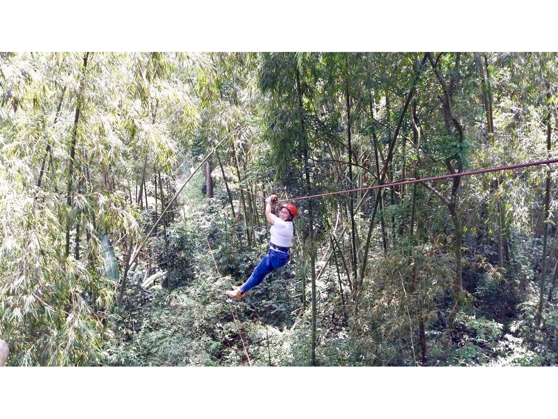Experiencia Volando Entre Gigantes (Canopy)