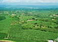 Immersion Experience in the Coffee Cultural Landscape (Coffee Tour)