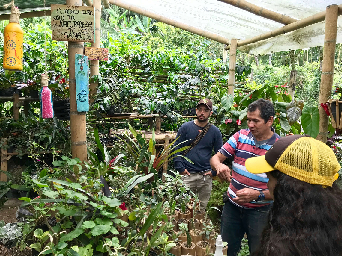 Agroecological and Permacultural Tour in the Ecogranja Versailles
