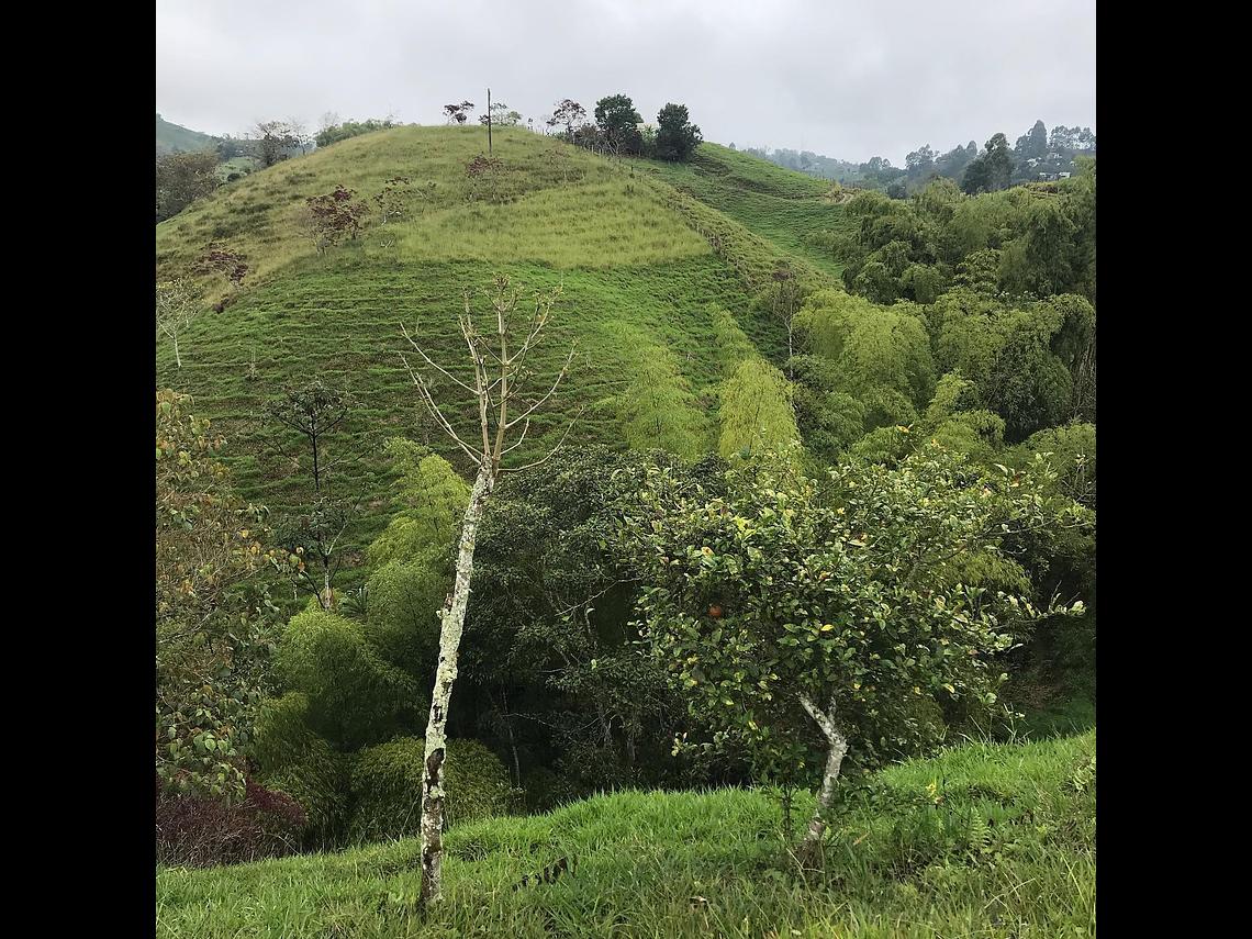 Experiencia Cabalgata Ecológica en Filandia