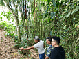 Ecological and Reforestation Walk Experience