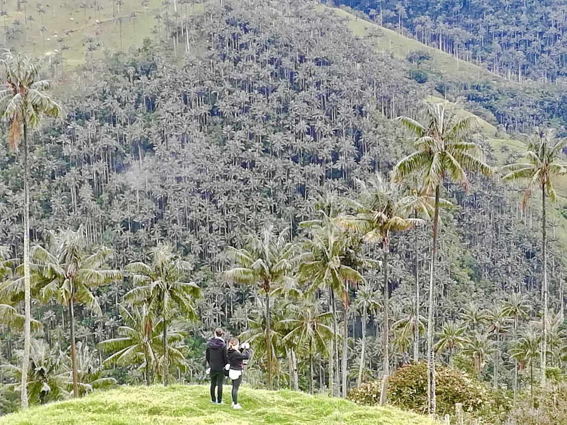 Expédition au volcan Incognito Machín (de Filandia)