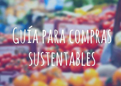 Guía para compras sustentables