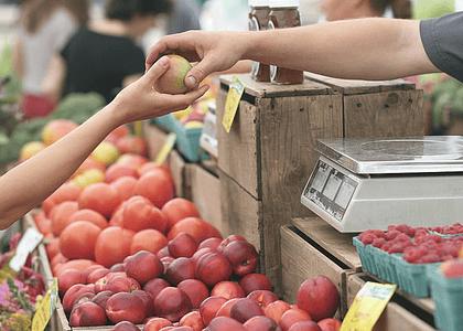 5 consejos para una alimentación sustentable