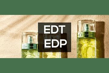 ¿Que diferencias hay entre EDP y EDT?