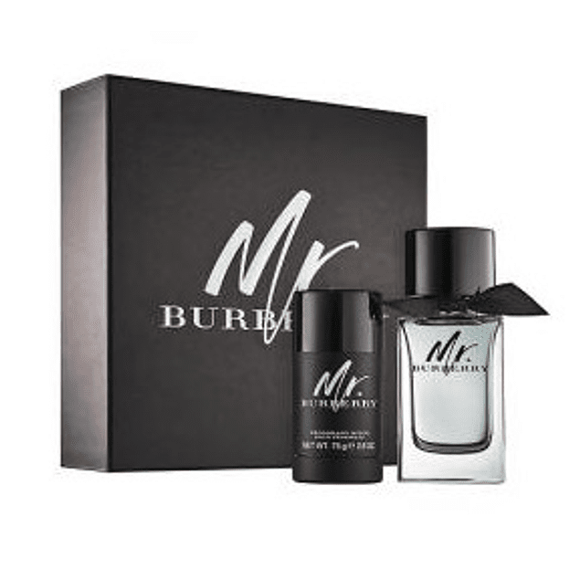 Perfume Mr Burberry Varon Edt 100 ml Estuche