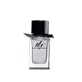 Perfume Mr Burberry Hombre Edt 100 ml Tester