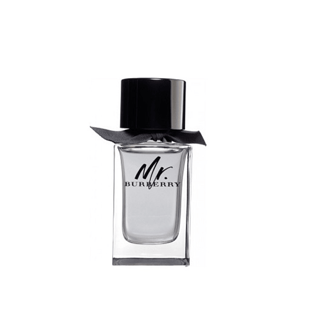 Perfume Mr Burberry Varon Edt 100 ml Tester