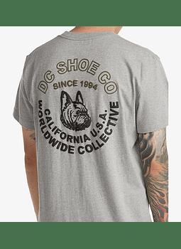 T-Shirt Homem DC Dawg Pound T