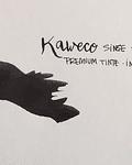 Kaweco - Ink Bottle - Pearl Black