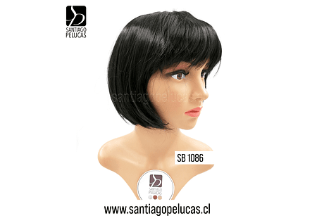 SB 1086 DRACO CORTA NEGRO