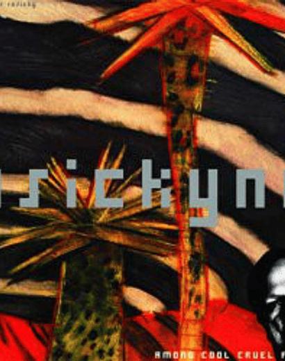 Neighbour Rosicky  · Among Cool Cruel Fires vinilo 12''