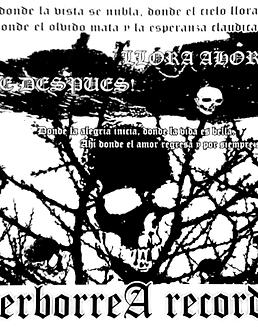 Llora Ahora... Rie Despues · Compilado CD