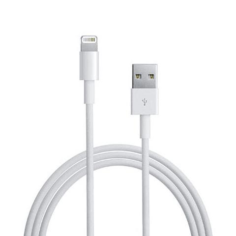 Apple Cable de Datos Original 1 MT Blanco en Caja