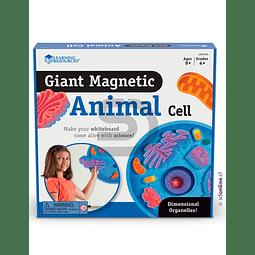 Celula Gigante Magnetica De Animal
