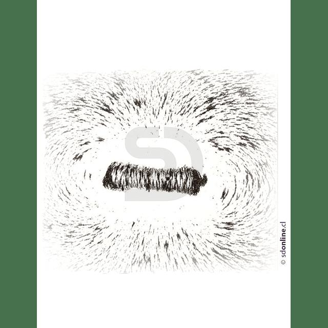 Experimento De Magnetismo