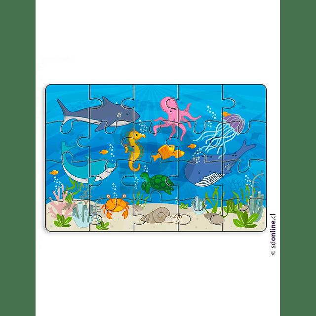 Set De 4 Puzzles Didactikids