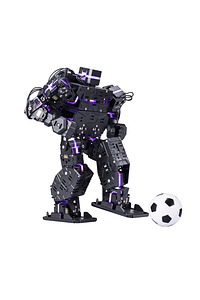 LS 868 Humanoid Robot