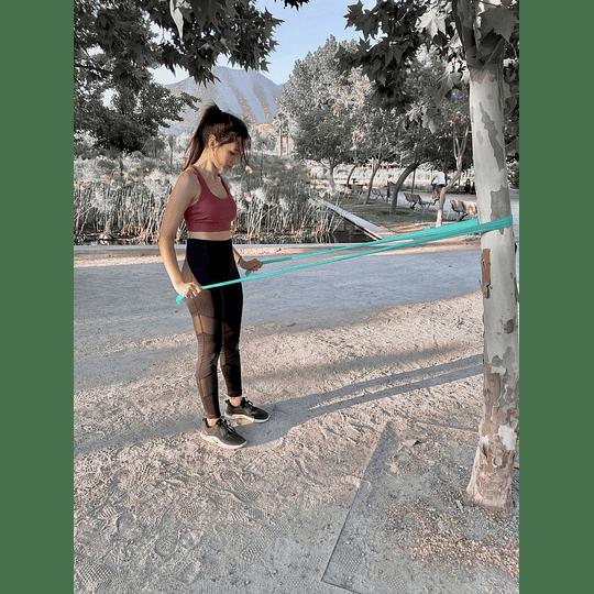 Banda elástica recta 0.35 MM - Image 2