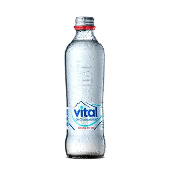 Agua Mineral Vidrio Desech. S/Gas 12 X 330 Ml Vital ($458 X Und)