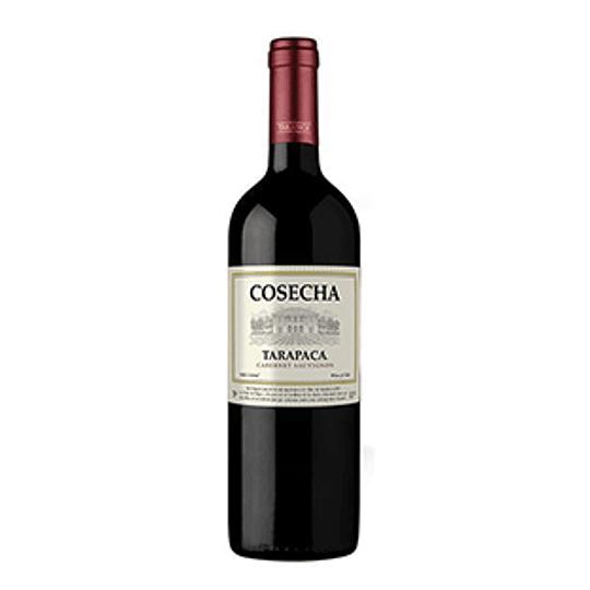 Vino Tinto Cabernet Sauvignon Botella 750 Cosecha
