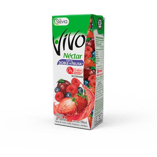 Néctar Berries Tetra 190 Ml Vivo