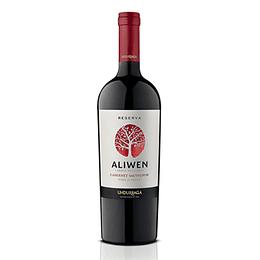 Vino Tinto Cabernet Sauvignon Aliwen 750 Ml Undurraga