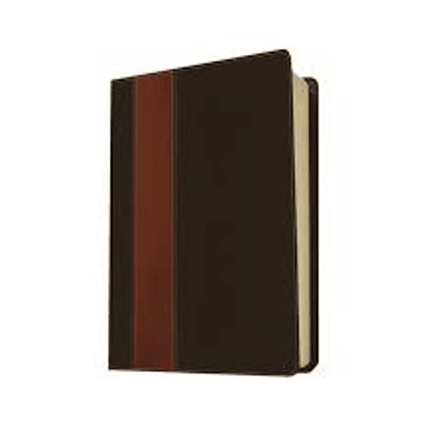Biblia NTV de estudio del diario vivir - Con índice Lateral - Cuero Marrón y Beige