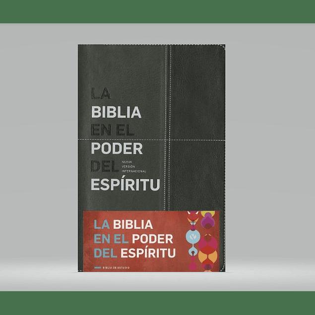 Biblia NVI Edición En el Poder del Espíritu - Negro/Gris