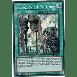 Inspeccion Del Especimen  Carta yugioh BLAR-SP013