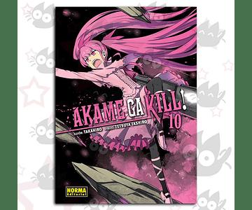 Akame Ga Kill Vol. 10