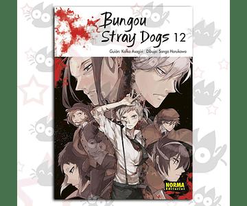 Bungou Stray Dogs Vol. 12