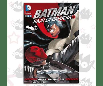 Batman: Bajo la Capucha Vol. 2