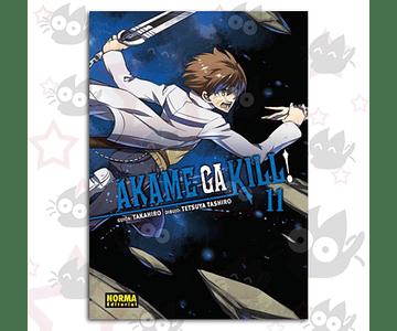 Akame Ga Kill Vol. 11