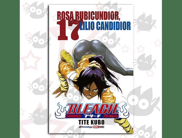 Bleach Vol. 17