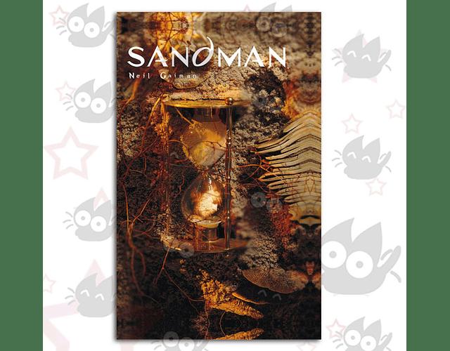 Sandman Vol. 9: Las Benévolas