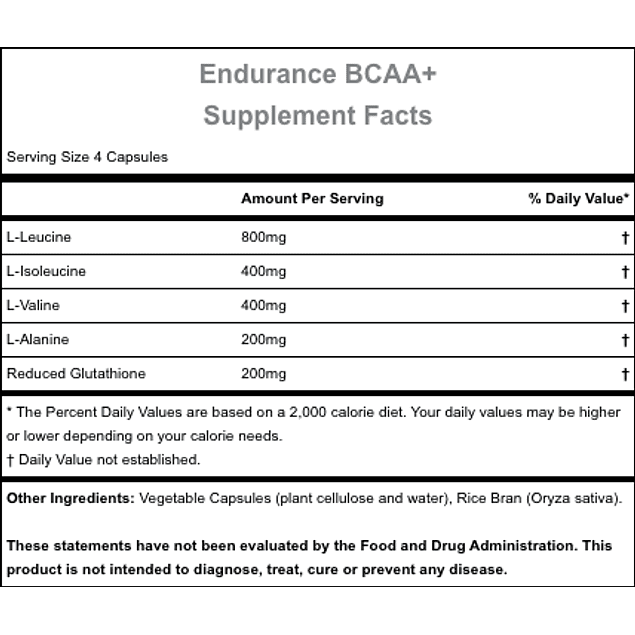 Hammer Endurance BCAA