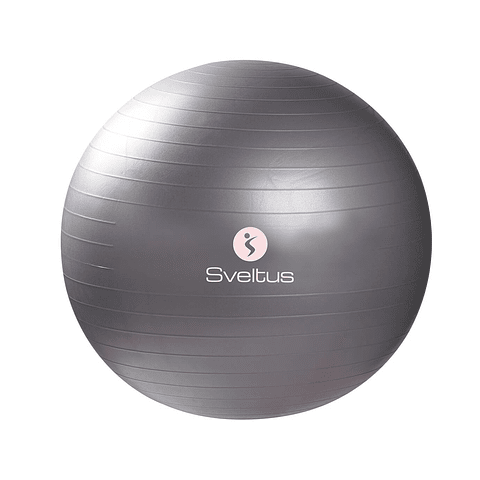 Gymball Gris de Ø65 cm