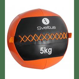 Wall Ball 5 kg