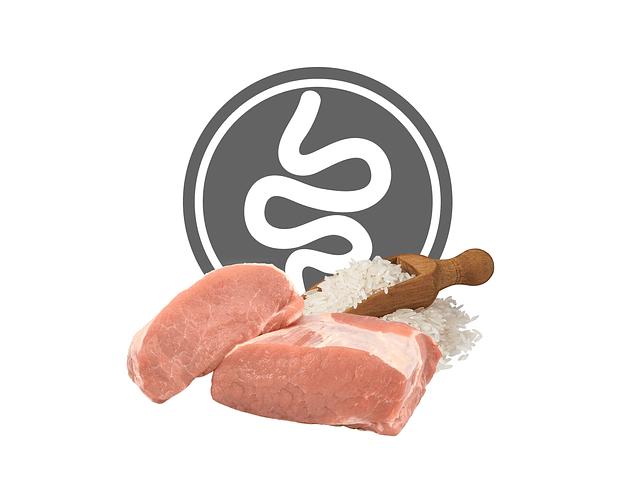 Exclusion Intestinal Porco e Arroz Médio/Grande 12Kg