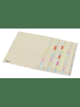 Separadores de cartão 6 unidades