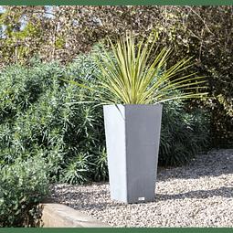 Plastic Pot Planter 1