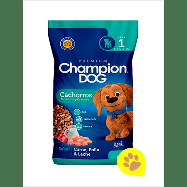 champion cachorro 18k