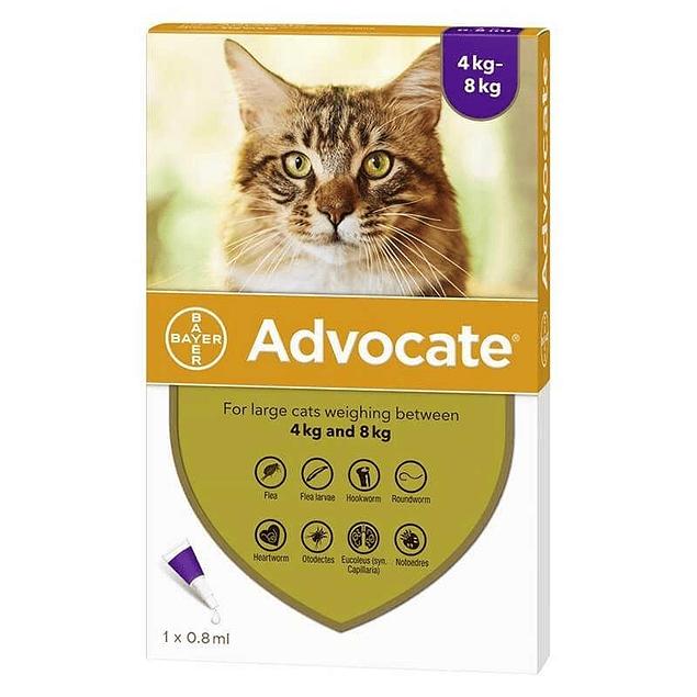 advocate gatos 4-8k