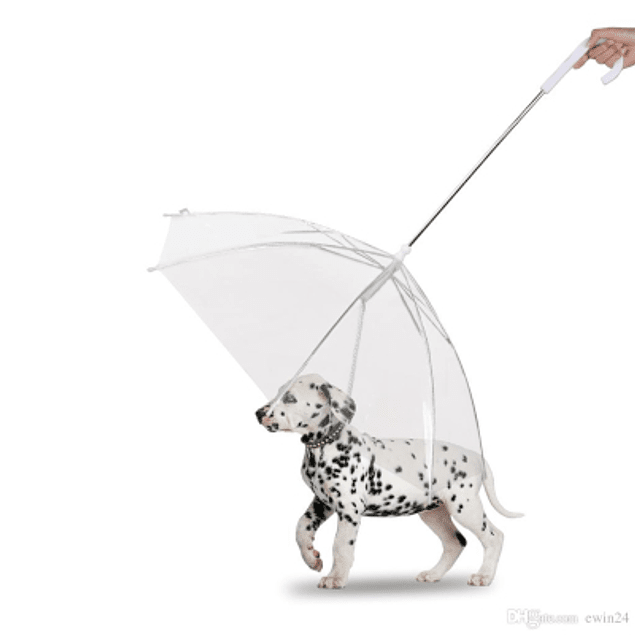 Paragua para perro con cadena