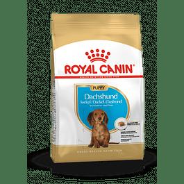 Royal Canin Dachshund Junior 2,5kg