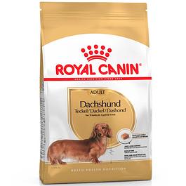 Royal Canin Dachshund Adulto 7,5kg