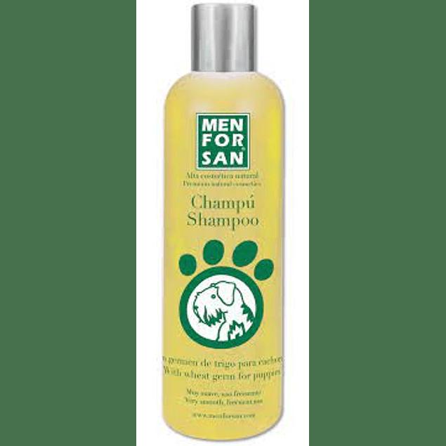 Menforsan Shampoo de Germen de Trigo