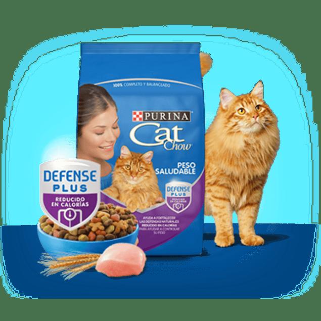 Cat Chow Control Peso 8kg